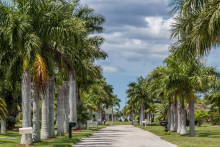 Retire in Cape Coral