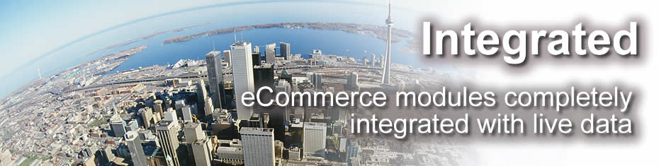 integrated ecommerce solutions in ERP SAAS