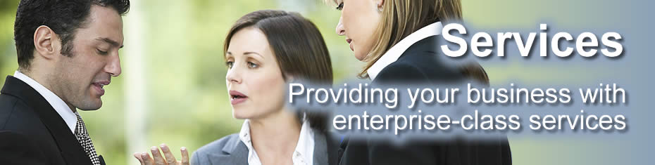 ERP SAAS Services & Support