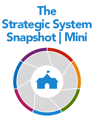 The Strategic System Snapshot | Mini