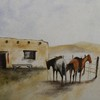 Horses_waiting