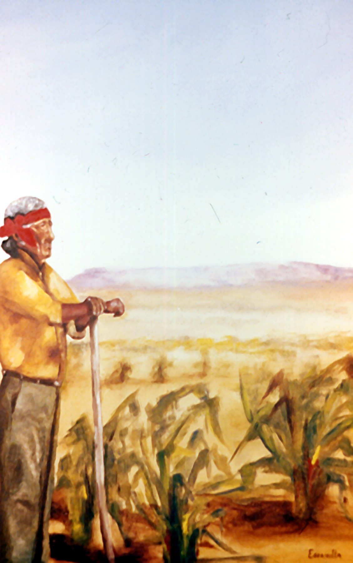 The_cornfield