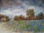 Storm_over_bluebonnets