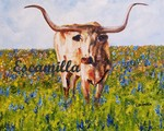 Texas_longhorn_fb