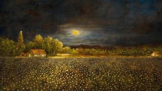 61._moonlight_over_cotton_field_sams