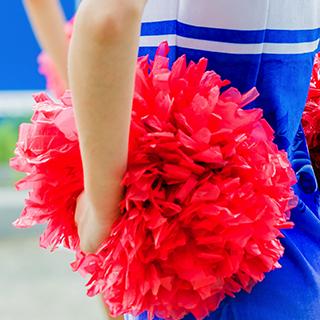 Cheer Schools