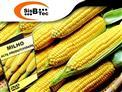 DVD Cultura do Milho Para Alta Produtividade de R$ 103,00 por apenas R$ 45,00.