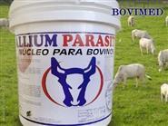 Gado Limpo, sem Mosca e sem Carrapatos! Nutri Allium Parasitt balde de 10kg + Frete Grátis de R$ 299,00 por apenas R$ 199,00.