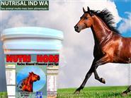 Seus Animais com Crescimento, Força e Saúde Invejável! Nutri Horse balde 5kg com Frete Grátis de R$ 250,00 por apenas R$ 180,00.