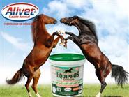 Super Suplemento p/ Equinos Atletas, Potros, Éguas Lactantes e Prenhas! EQUIPHOS ADITIVADO balde 4kg de R$ 185,00 por R$ 138,75.