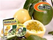 DVD Maracujá - Produção Comercial de R$ 119,00 por apenas R$ 48,00.