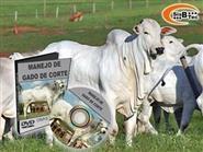 DVD Manejo de Gado de Corte - Cria e Recria de R$ 103,00 por apena R$ 48,00.