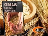 DVD Doenças Cereais de Inverno de R$ 103,00 por apenas R$ 29,90.