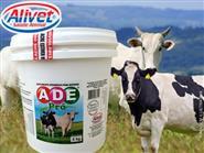 Aumente o Crescimento e Produção! Suplemento Vitamínico p/ Bovinos ADE PRÓ 05 kg + Frete Grátis de R$ 300,00 por R$ 201,00.