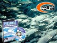DVD Peixes - Criação e Manejo de R$ 119,00 por apenas R$ 29,90.