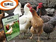DVD Aves Domésticas de R$ 103,00 por apenas R$ 29,90.