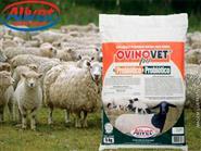 Suplemento Vitamínico Mineral para Ovinos! Ovinovet – Saco 5kg + Frete Grátis de R$ 285,00 por apenas R$ 200,00.