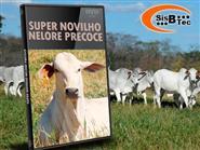 DVD Novilho Nelore Precoce de R$ 103,00 por apenas R$ 29,90.