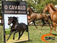 DVD O Cavalo quarto de Milha - Manejo, Doma e Adestramento de R$ 119,00 por apenas R$ 42,90.