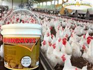Suplemento Mineral, Vitamínico para Aves!!! AMINOAVES 01 KG + Frete Grátis de R$ 49,90 por apenas R$ 29,90.
