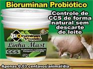 Tratamento para controle da CCS e Prevenção da Mastite! Bioruminan-mast Balde de 5kg + Frete Grátis de R$ 247,00 por R$ 197,60.