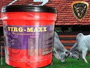 Acelerador de Crescimento e Engorda! VIRG-MAXX Hormônio Natural em Pó Balde 5kg + Frete Grátis de R$ 350,00 por R$ 290,00.