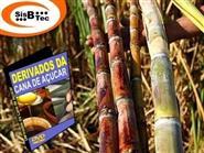 DVD Derivados da Cana de Açúcar de R$ 103,00 por apenas R$ 29,90.