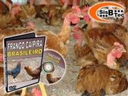 DVD Frango Caipira Brasileiro - Como Criar de R$ 103,00 por apenas R$ 29,90.