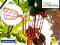 Colete suas Frutas Sem Esforço! Coletor de Frutas Tramontina com Frete Grátis por apenas R$ 46,90.