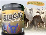 O Melhor Indutor de Cio para Bovinos Leite/Corte! Ciocav pote 1 kg + Frete Grátis de R$ 249,00 por R$ 199,90.