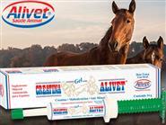 Explosão de força e energia para Cavalos Atletas! Creatina Gel Alivet! Pack c/ 06 unidades de R$ 240,00 por R$ 180,00.