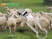 Tosquiadeira Manual para Ovinos e Caprinos com Frete Grátis de R$ 198,00 por apenas R$ 114,90.