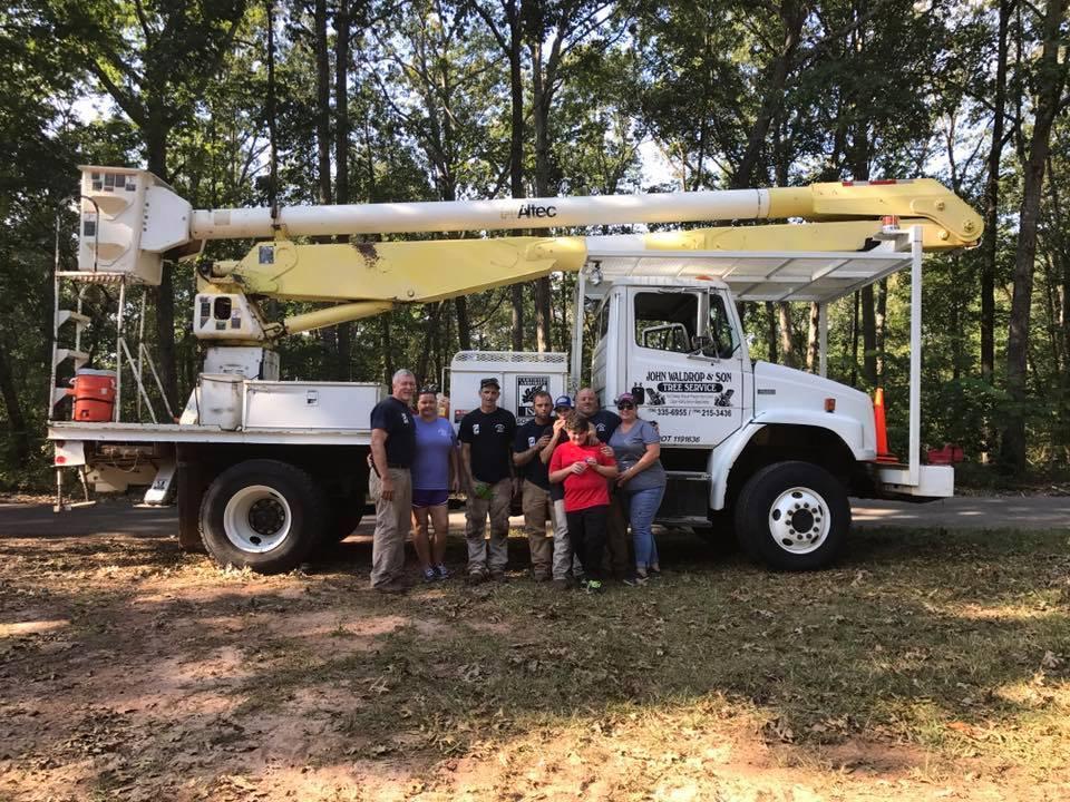 waldrop tree services