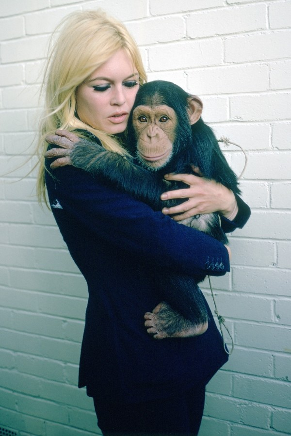 Brigitte Bardot with monkey (Chimpanzee)-2