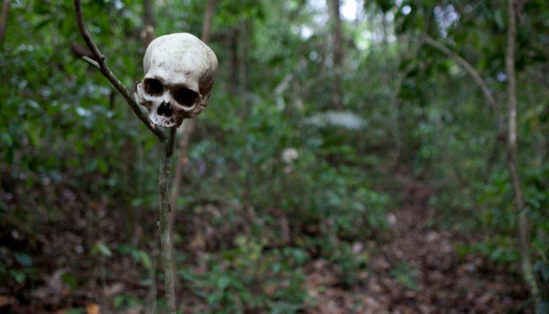 skull-stake-main_h
