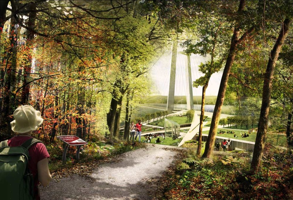 04-Forest-Trail-Emergence-View