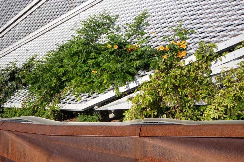 pier-35-shop-architects-new-york-eco-park_dezeen_2364_col_0