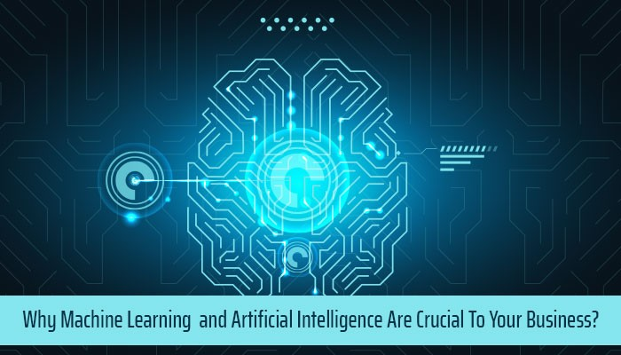 Why Machine Learning and Artificial Intelligence Are Crucial To Your Business?
