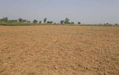 1000 Kanal Good Location Agricultural Land For Sale