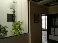 1 Kanal 3 Bedrooms House For Rent