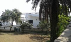 4 Kanal Prime Location Commercial Purpose House For Rent