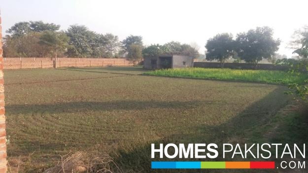 8 Kanal Prime Location Agricultural Land For Sale