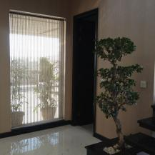 2 Kanal 5 Bedrooms Ideal Location House For Rent