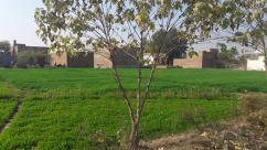 Ideally Located Agriculture Land For Sale