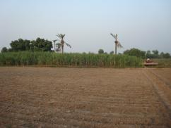 174 Kanal Nice Location Agricultural Land For Sale, Suitable For All Kind Of Crops