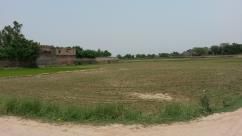 56 Kanal Good Location Commercial Land For Sale