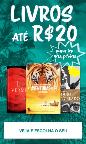 Livros ate 20 reais para ler nas férias