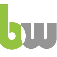 B-WISE