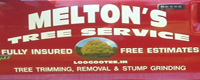 Website for Melton's Tree Service