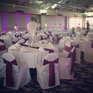 Thumb champaign il wedding lighting rental